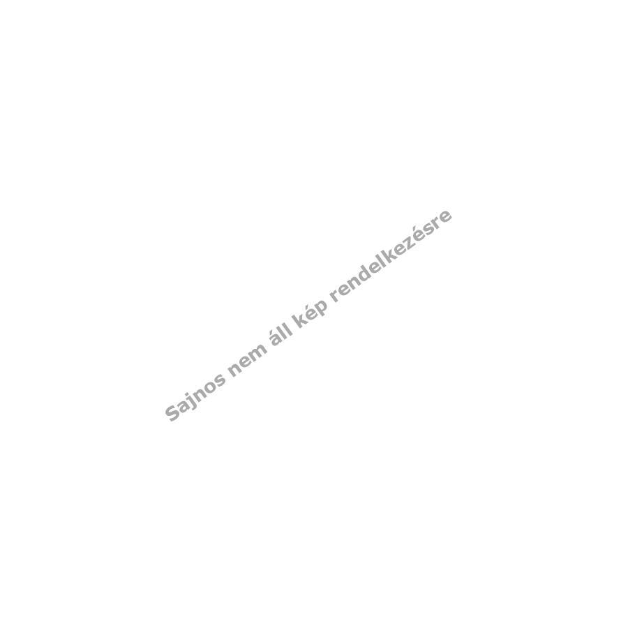 Töltőtápegység Micro USB 2,5A Huawei Y3